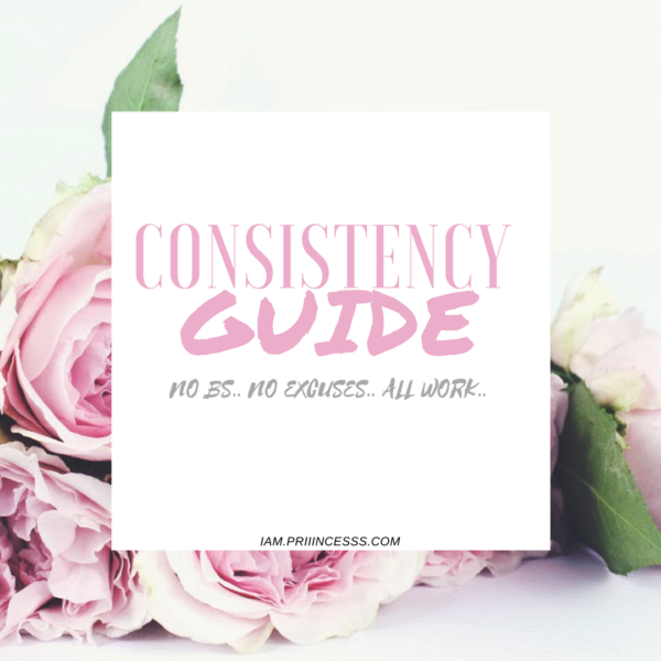 NO EXCUSES, NO BS 90 DAY CONSISTENCY GUIDE