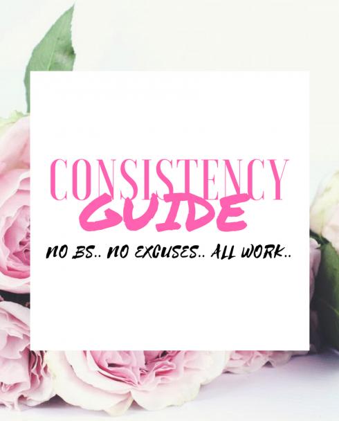 NO EXCUSES, NO BS 90 DAY CONSISTENCY GUIDE